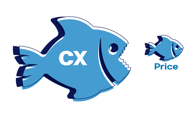 Illustration of fish showing importance of CX over price in driving customer satisfaction.